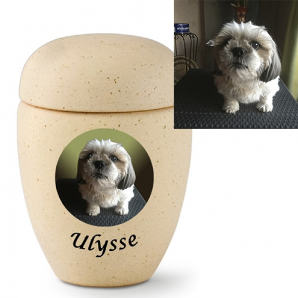 urn dog avec photo